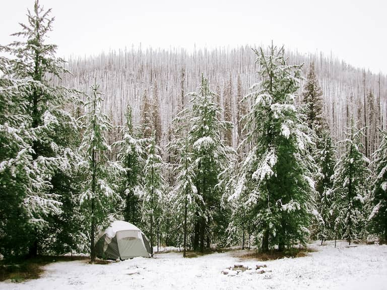 tent in snowy forrest