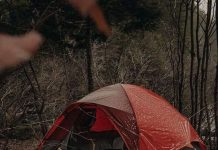 How to Remove Mold from a Tent