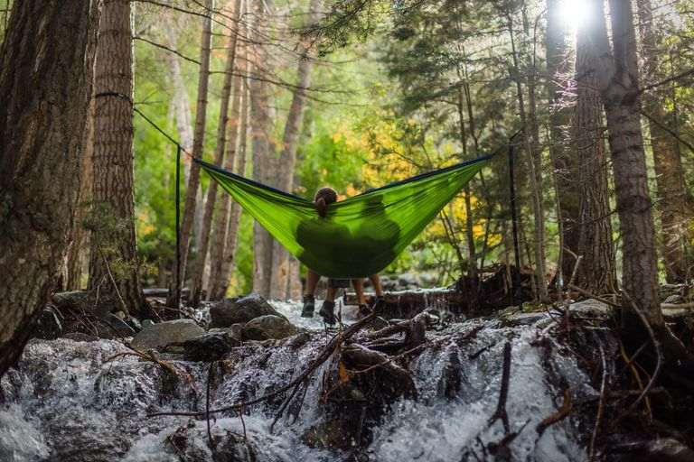 couple enjoying a hammock in a forest